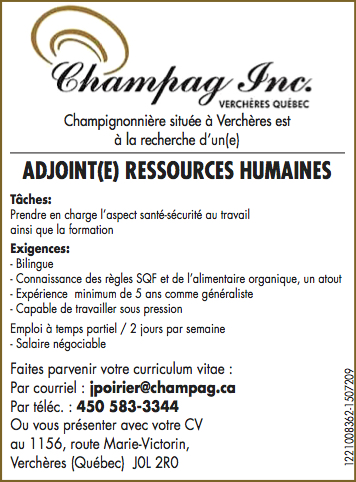 ADJOINT(E) RESSOURCES HUMAINES